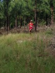 KN 16km trail 00042
