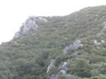 KN 24 km Trail00167