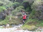 KN 24 km Trail00241