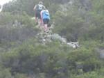 KN 24 km Trail00255
