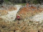 KN 24 km Trail00294
