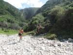 KN 24 km Trail00309