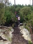 KN 24 km Trail00367