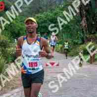 marathon-119