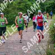 marathon-150